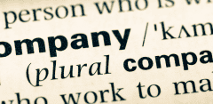 Advantages and disadvantages of a limited company