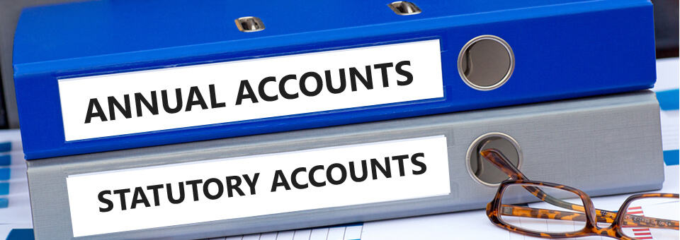 Annual accounts and statutory accounts