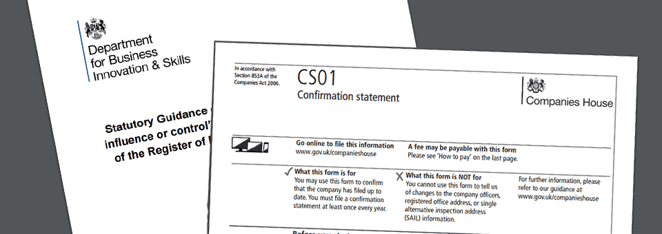 An introduction to the annual confirmation statement