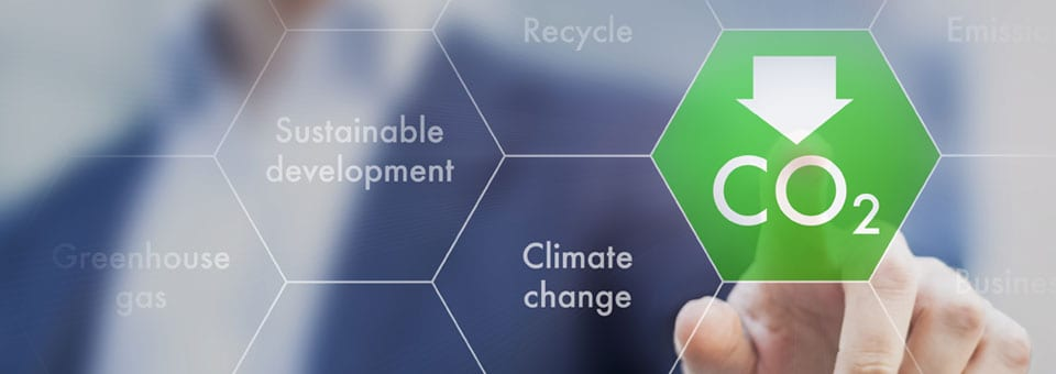 How can your business reduce its carbon footprint?